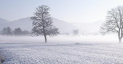 Recensement dispositif « Vagues de froid » avant le 20 décembre !