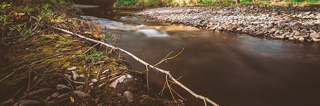 Déclaration d'intérêt général concernant les travaux d'entretien et de restauration des affluents directs du Tarn